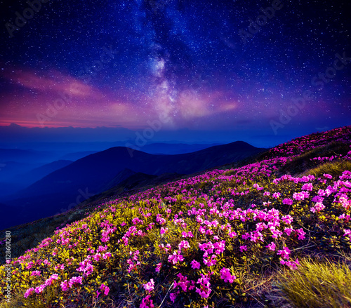 Wall mural - starry night in mountain
