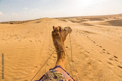 Fotografia, Obraz  Camel rider view in Thar desert, Rajasthan, India