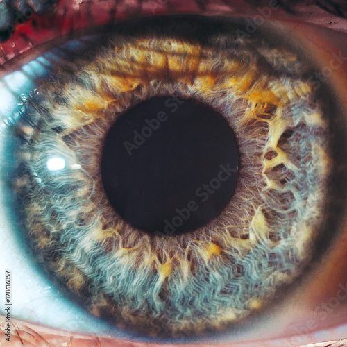 Door stickers Iris Macro eyes pupil iris oculist blue yellow