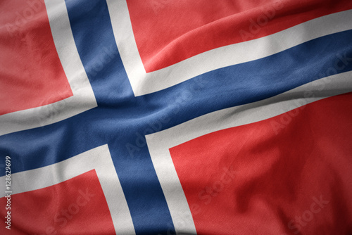 Photo waving colorful flag of norway.