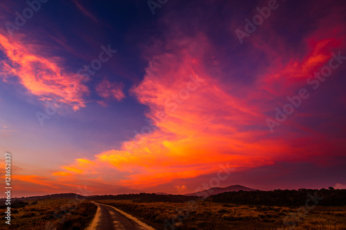 Canvas Prints Crimson Landscape in Horton Plains National Park, Sri Lanka.