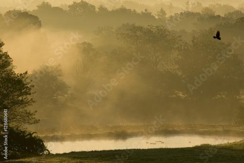 Sunrise over farmland near South Woodstock, Connecticut.