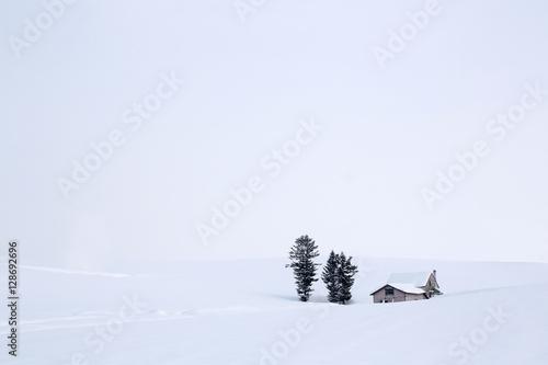 Obraz na plátně  大雪原