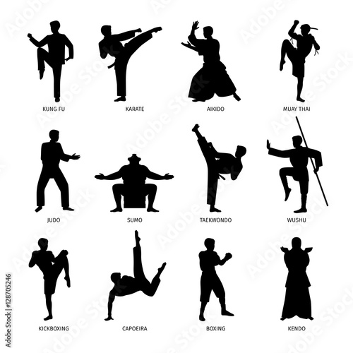 Asian martial arts, isolated vector black silhouettes. Karate and kung fu, sumo and boxing Wall mural