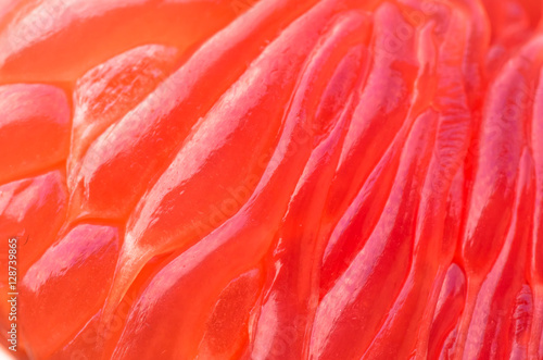Garden Poster Flamingo cleared grapefruit closeup, background