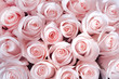 canvas print picture - Pink roses as a background