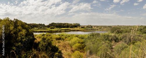 Fototapeta lake in green countryside wide view obraz na płótnie