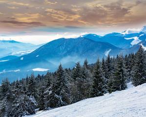 Fototapeta winter scene in mountains