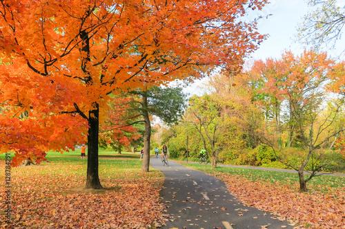 Fotografie, Tablou Fall colors on the Mount Vernon Trail in Alexandria, VA