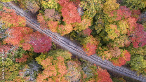 Railroad tracks crossing forest in Autumn, aerial view