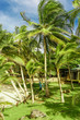 little corn island beach view, Nicaragua