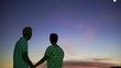 Asian senior couple silhouette with early morning sky and moon background. Secure and happy life abstract