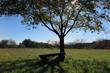 山の上の公園の風景1