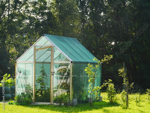 Fotografia little greenhouse