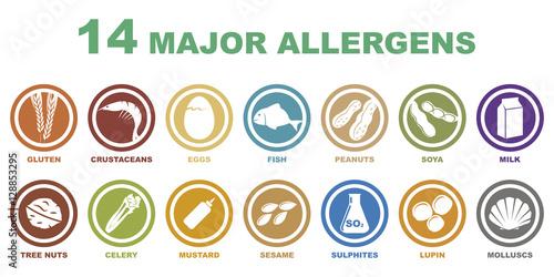Photo iconos de alergenos mas importantes