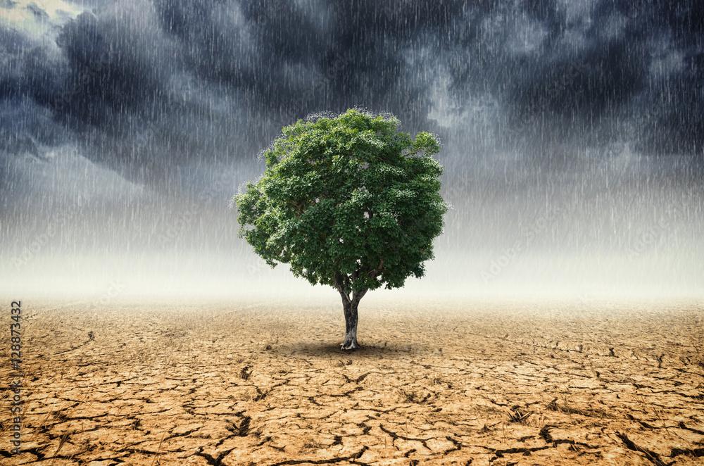 Fototapeta Concept of climate change.