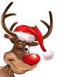 Rudolph Weihnachtsmütze