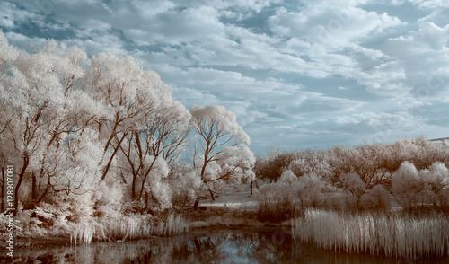 Staande foto Bleke violet infrared landscape