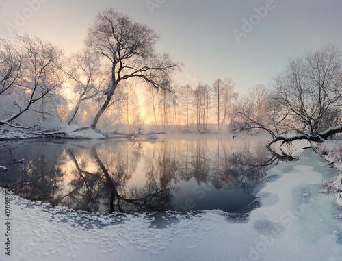 zimowe-slonce-oswietlaja-mrozne-drzewa-rano