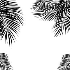 Crni palmin list na bijeloj pozadini. Vektorska ilustracija.