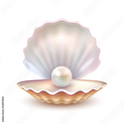 Pearl Shell Realistic Close Up Image Fotobehang