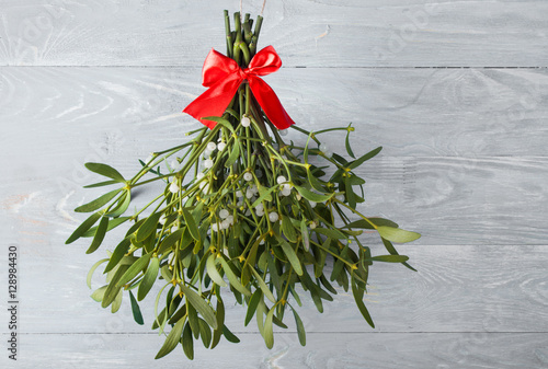 Fotografie, Obraz  Broom from green mistletoe