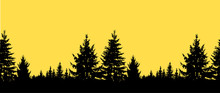 Image Seamless Landscape. Silhouette Of Coniferous Trees On The Background Of Yellow Sky.