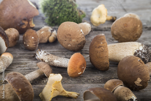 Fotografie, Obraz  Raw mushrooms on a wooden table. Boletus edulis and chanterelles