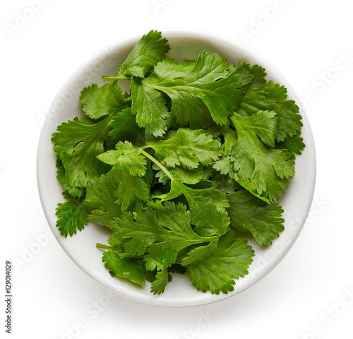 Bowl of coriander leaves isolated on white, from above