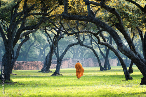 Photo sur Toile Bestsellers Monk walking in the area forest with old wall at ayutthaya