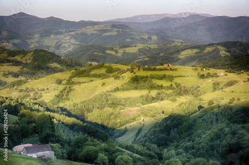 Garden Poster Rice fields Summer evening on wild carpathian mountain hills