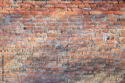 Poster Baksteen muur Weathered stained old brick wall background. Texture of an old wall of several floors with lots of rows of bricks