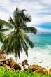 Amazing tropical beach