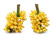 Banana Bunch Isolated On White Background.Ripe Bananas Bunch Iso