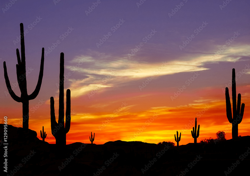 Wild West Sunset with Cactus Silhouette