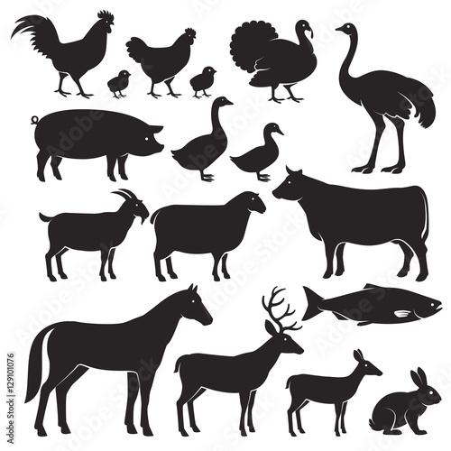 Farm animals silhouette icons. Vector illustrations Fototapete