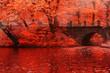 canvas print picture - Beautiful landscape background