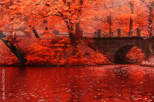 Foto op Aluminium Rood Beautiful landscape background