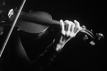 Violin Player Violinist Hands ...