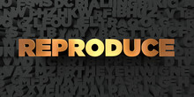 Reproduce - Gold Text On Black Background - 3D Rendered Royalty Free Stock Picture. This Image Can Be Used For An Online Website Banner Ad Or A Print Postcard.