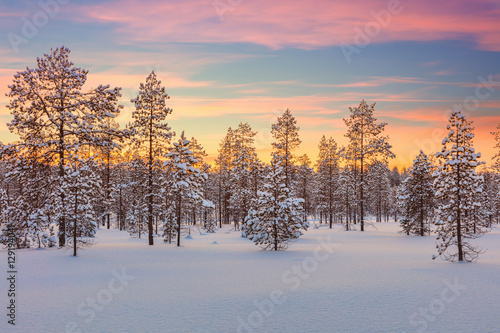 Tuinposter Purper Majestic winter landscape - sundown, forest, trees and snow
