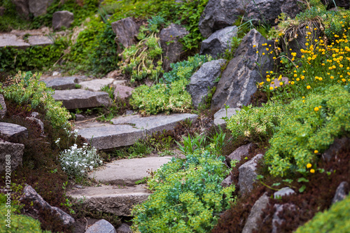 Papiers peints Jardin Stony stairs in the green garden