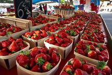 Strawberry-Fresh-Fruits-Market-Bruno Gaget
