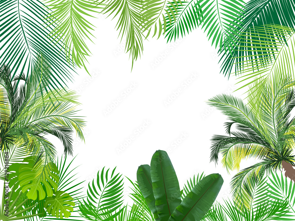 Fotografía Tropical jungle background with palm tree and leaves ...