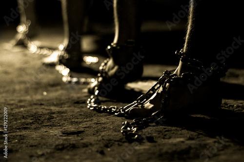 Photo captivity