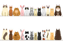 Cats Border Set, Front View And Rear View