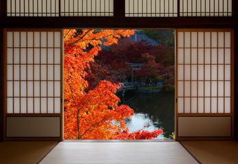 Fototapeta Japoński Beautiful red fall maple leaves framed by traditional Japanese room doorway