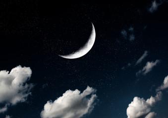 Obraz na płótnie Canvas The moon in the night sky in clouds