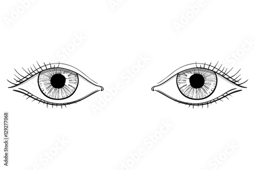 human woman s eyes hand drawn sketch buy this stock vector and