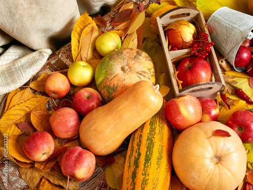 Poster  autumn background, fruits and vegetables on yellow fallen leaves, apples and pum